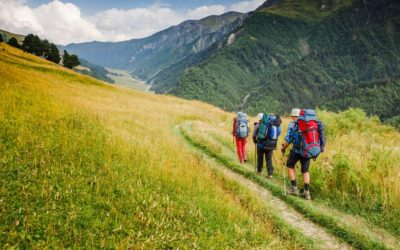 WALKING WEEKENDS & HOLIDAYS : the whole kit and caboodle